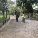 『【早稲田】ハイキング花見』の画像
