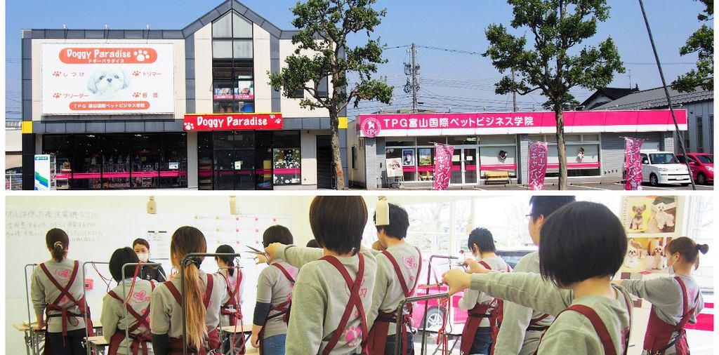 TPG富山国際ペットビジネス学院  イメージ画像