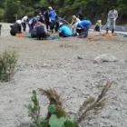 『5月24日(土) ボランティア活動』の画像