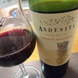 『チリ産赤ワイン~Andesita Cabernet Sauvignon(アンデシータ カベルネ・ソーヴィニヨン)』の画像