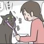 我が家の猫のマッサージの好み