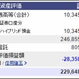 『週末(10月8日)の保有資産。2億2964万8320円』の画像