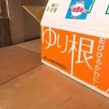 『北海道からゆり根が届いた〜♪』の画像