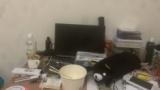 机の上めっちゃ綺麗にしたから見てくれ(※画像あり)