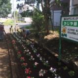 『戸田市五差路の王将の裏手・かじや緑地の花の植え替え』の画像