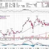 『【悲報】露アルミ大手ルサールのデフォルト懸念でロシア株が大暴落!』の画像