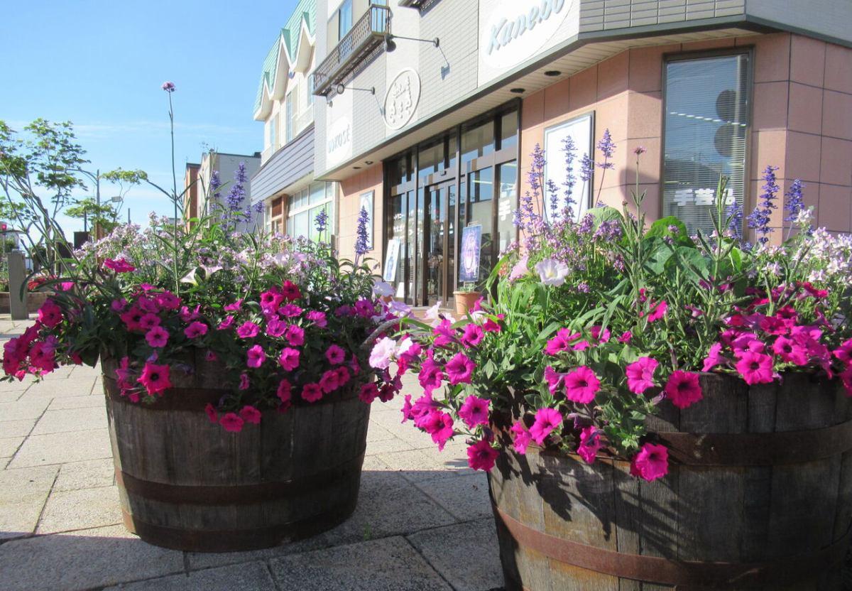 深川市商店街振興組合連合会 イメージ画像