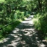 『六道山までまっしぐら!』の画像