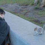 『【乃木坂46】人懐っこすぎるリスと戯れる齋藤飛鳥さんの様子がこちらwwwwww』の画像