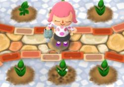 【ポケ森】イベントで「水やり」は不要!←3時間花は勝手に咲く!【レイジと春の花畑】