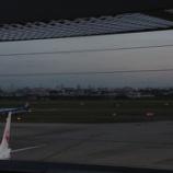 『離着陸する飛行機を眺めながら空港のビアガーデンで( ゚∀゚)ノБ□ カンパーイ♪』の画像