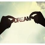 なんでお前らって夢追いかける人間を見下すの?