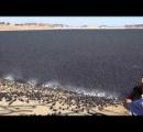 湖面をスチロール板で覆えば蒸発しなくなり渇水対策になるんじゃね?