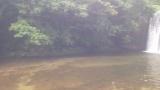渓流釣りに行ってきた。釣った魚を炭火で焼いて食うぞ(※画像あり)