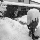 『久しぶりの雪』の画像