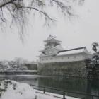 『雪の富山からの電話』の画像