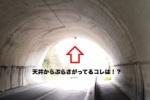 こ、これは!?磐船街道のトンネルにぶら下がる『謎の物体』発見!?