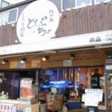 『JAL×はんつ遠藤コラボ企画【鎌倉・江の島編】1日め・しらす料理(とびっちょ)』の画像
