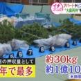 北海道で大麻を栽培しビニールハウスで加工、六代目山口組『誠友会』幹部ら6人逮捕