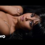 『【歌詞和訳】Hands To Myself / Selena Gomez』の画像