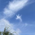 雲三昧 -雲と空の記録と独り言-