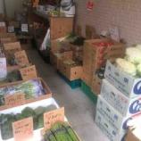 『【デリバリー】配達してくれる八百屋さん、戸田市役所南通り・まるこう青果さんの「本日のお野菜・くだもの」情報。宅配受付はお電話で。午前11時までの受付です。』の画像