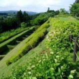 『(^^)vいつか行きたい日本の名所 山中城跡』の画像