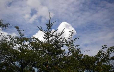 『残暑(京羅木山の風景)  Aug.27(Fri) 2010』の画像