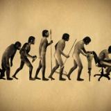 人類によって「進化が観測された生物」っているのか