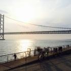『信仰、明日に作り上げる橋。心の旅路より』の画像