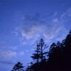 『寒風吹く夕暮れ』の画像