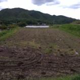 『畑の記録0520』の画像