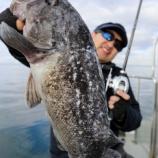 『1月 4日 釣果 スロー・ライトジギング 2019年初釣行』の画像