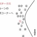 【葵S出走馬分析】ファルコンステークス