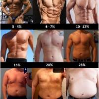とにかく体脂肪率を下げたい奴らのスレ