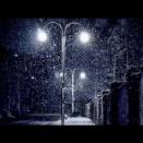 大寒を迎えてー1月20日