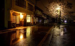 雨の夜「濡れ艶」を帯びた夜桜