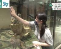 【画像】動物園の飼育員さん、素晴らしいwwwwwwwwwwwwww