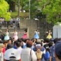 2014年横浜開港記念みなと祭第2回ヨコハマカワイイパーク2014 その7(つりビット)