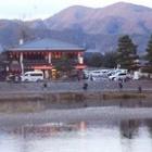 『京都嵐山 花灯籠』の画像
