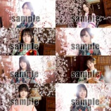 『【速報】乃木坂46『桜花爛漫』新たなイベント開催決定へ!!!!!!』の画像