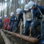 早稲田大学 思惟の森の会