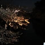 『2007年 4月29日 花見:弘前市・弘前公園』の画像