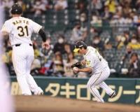 【阪神】伊藤将司の器用な「素手キャッチ」に球場沸く 4回まで完全投球