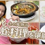 『香港彩り情報「冬の風物詩 蛇料理を堪能しよう」』の画像