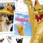猫地蔵さんの「バンザイ猫」フィギュア第2弾がガチャに登場!「バンザイ 二唱」