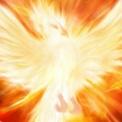 『大和光明会』改名→『フェニックス・ジャパン』 / レイキ、超パワスポ、講演、ワークetc 最新スケジュール~(1)