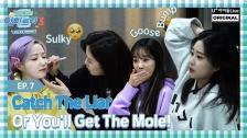 「IZ*ONE Eat-ting Trip3」EP07.Catch The Liar or You'll get the Mole!動画公開