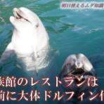 水族館に行ってまいります。