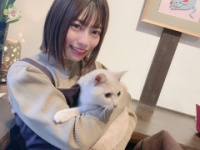 【日向坂46】めいめいと猫カフにきました。